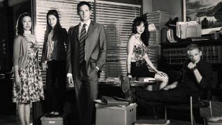 The Firm [TV Series]