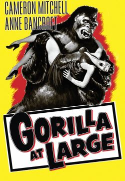 Gorilla at Large
