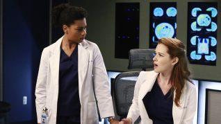 Grey's Anatomy: One Flight Down