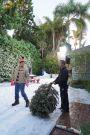 The Goldbergs : A Christmas Story