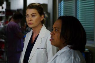 Grey's Anatomy: There's a Fine, Fine Line