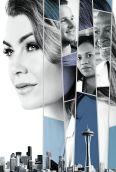Grey's Anatomy [TV Series]