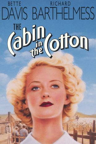 Cabin in the Cotton
