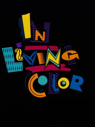 In Living Color [TV Series]