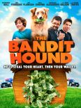 The Bandit Hound