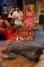 The Big Bang Theory : The Bozeman Reaction