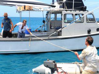 Hawaii Five-0: Lana I Ka Moana (Adrift)