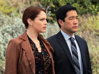 The Mentalist: So Long, and Thanks for All the Red Snapper