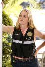 CSI: Crime Scene Investigation : Road to Recovery