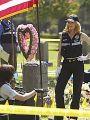 CSI: Crime Scene Investigation : Shock Waves