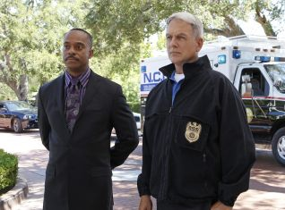 NCIS: Nature of the Beast