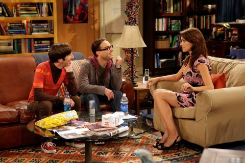 The Big Bang Theory : The Pork Chop Indeterminancy