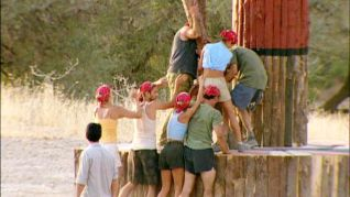 Survivor: Who's Zooming Who