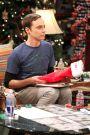 The Big Bang Theory : The Santa Simulation
