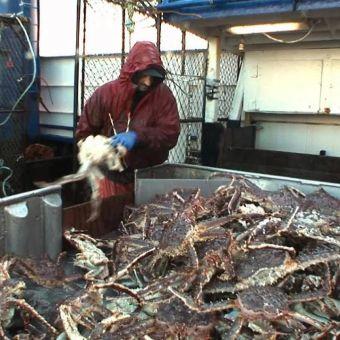 Deadliest Catch : The Last Lap