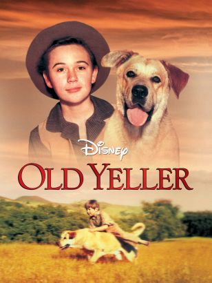 Friends the one where old yeller dies online dating