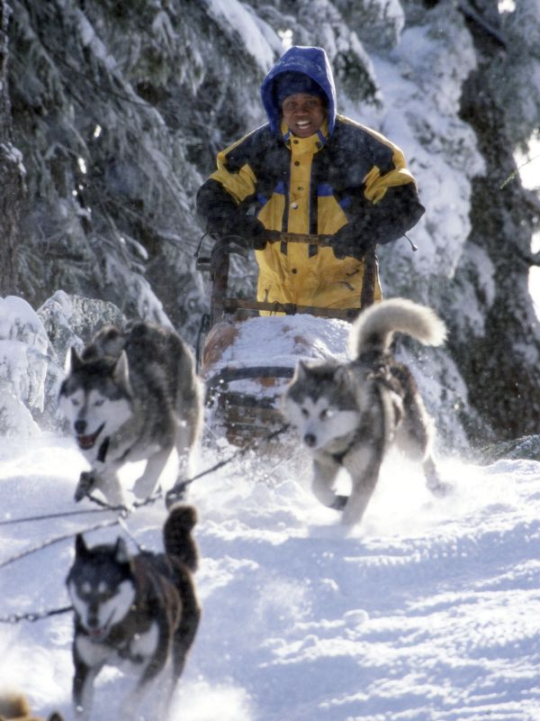 Movie Review Snow Dogs