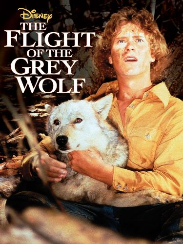 The Flight of the Grey Wolf