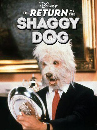 The Return of the Shaggy Dog