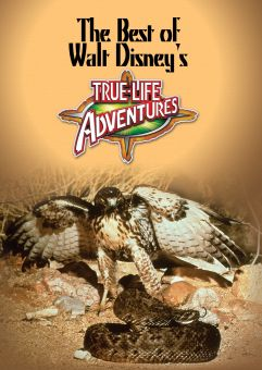 Best of Walt Disney's True Life Adventures