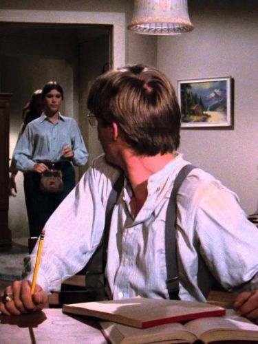 The Waltons The Ring 1974 Cast And Crew Allmovie A day for thanks on walton's mountain. allmovie