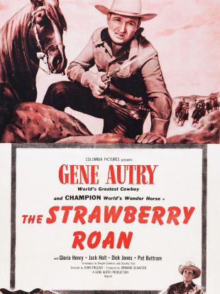 The Strawberry Roan