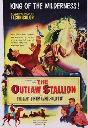 The Outlaw Stallion