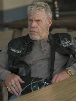 Sons of Anarchy: Stolen Huffy