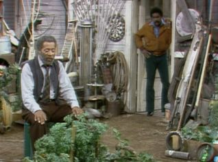 Sanford and Son: Fred's Treasure Garden