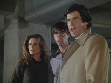 Remington Steele : Signed, Steeled and Delivered
