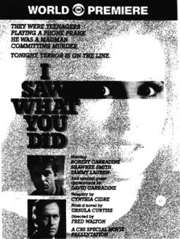 I Saw What You Did