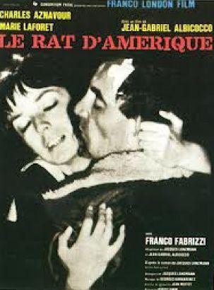 Le Rat D'Amerique
