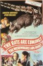 Rats Are Coming! The Werewolves Are Here!