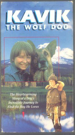 Kavik, the Wolf Dog