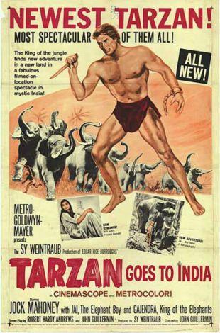 Tarzan Goes to India