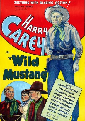Wild Mustang (1935)