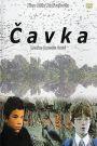 Cavka