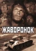 Zhavoronok