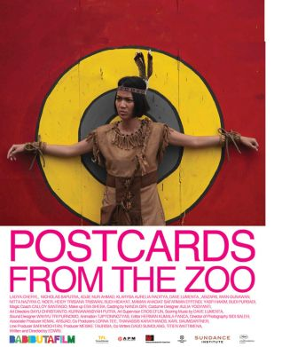 Postcards From the Zoo