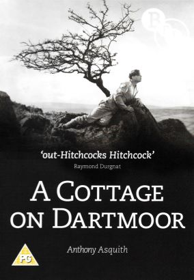 Cottage on Dartmoor