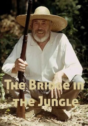 The Bridge in the Jungle