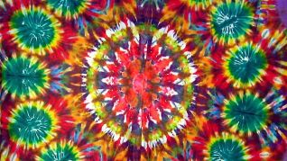 Tie-Dyed: Rock 'n Roll's Most Deadicated Fans