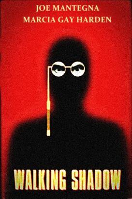 Walking Shadow: A Spenser Mystery