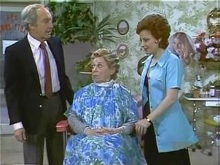 Diff'rent Strokes: Have I Got a Girl for You