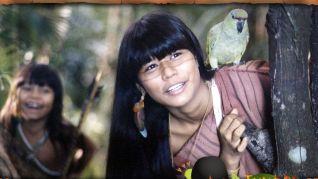 Taina 2: A New Amazon Adventure