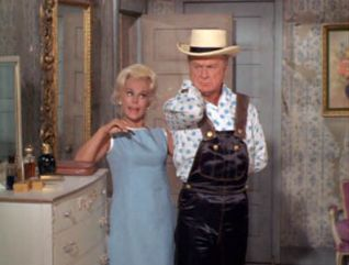 Green Acres: The Hooterville Image