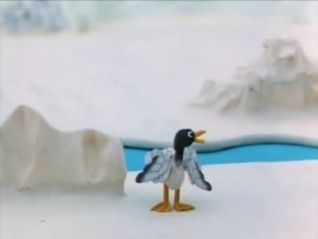 Pingu: Pingu and the Seagull