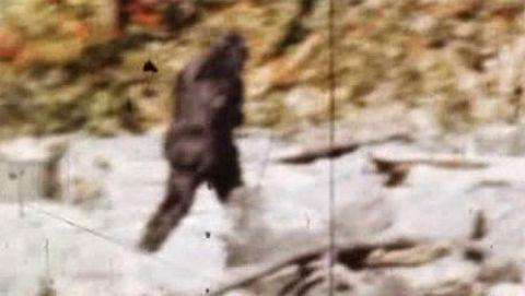 MonsterQuest : Bigfoot