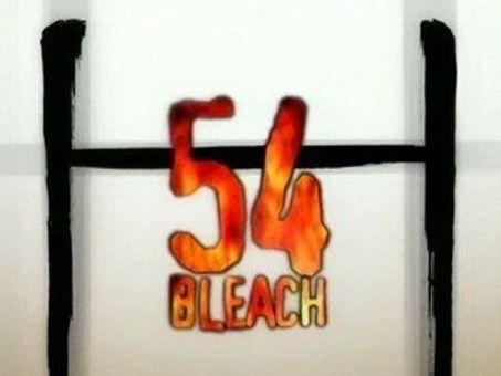 Bleach : Ishida's Ultimate Power!