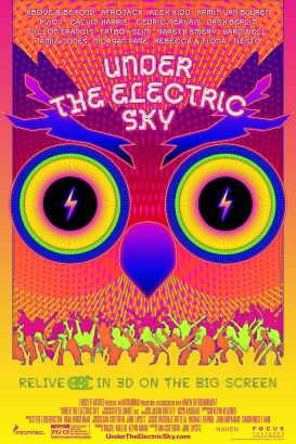 Under the Electric Sky (EDC 2013)